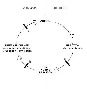 It illustrates that self-DDD can operate at three places in the cycle ...